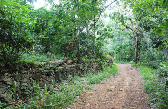 Land for development 3.2 Acre