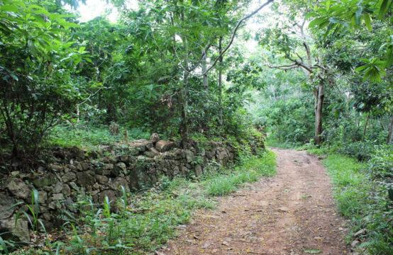 Land for development 3.2 Acre