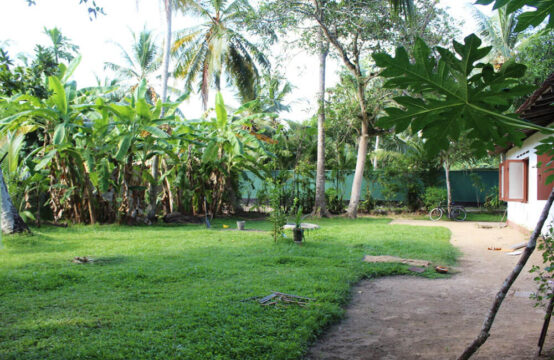 Land for sale on Kaluwamodara river