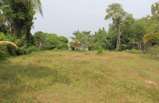 Land for sale on Bentota River