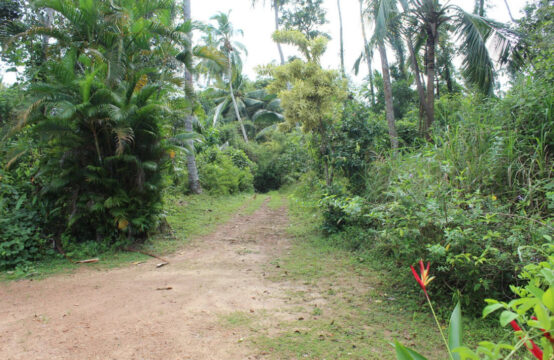 Land with 2 bedroom house for sale