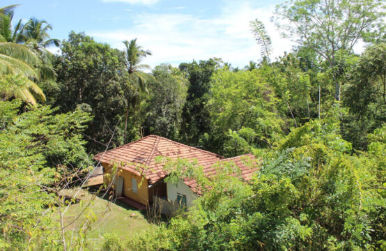 3 Bedroom house for sale  2.5 Acres
