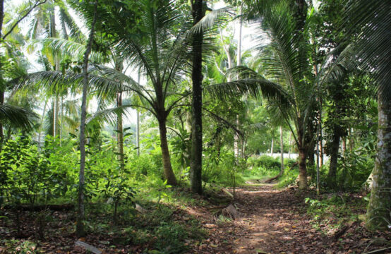 Land for sale 2.1 Acres