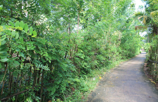 Land for sale 1.3 Acres